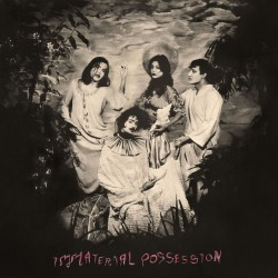 Immaterial Possession - S/T