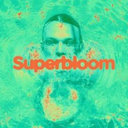 Ashton Irwin - Superbloom (Coke Bottle Clear Vinyl)