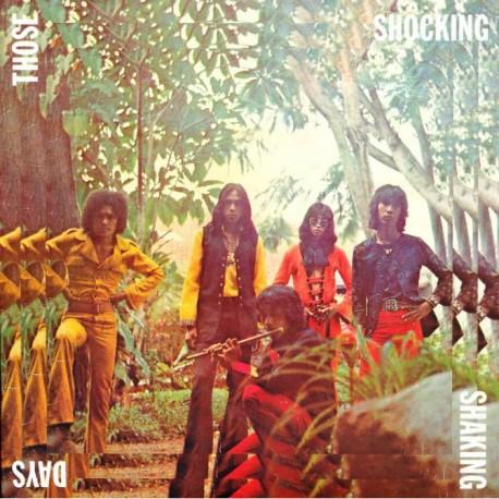 Various - Those Shocking Shaking Days