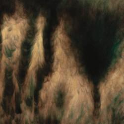 William Basinski - Lamentations