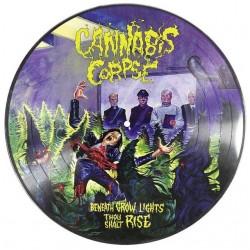 Cannabis Corpse - Beneath Grow Lights Thou Shalt Rise (Pic Disc)