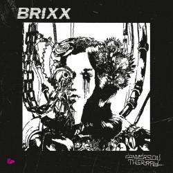 Brixx - Conversion Therapy