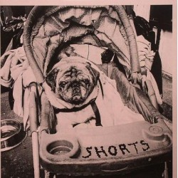 Shorts - Berlin 1971