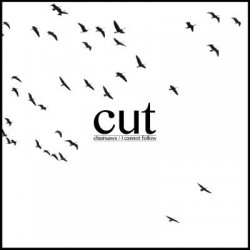 Cut - Chainsaws/i Cannot Follow