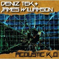 Deniz Tek And James Williamson - Acoustic K.O.