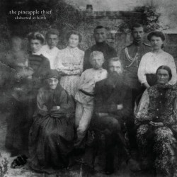 The Pineapple Thief - Abducted At Birth
