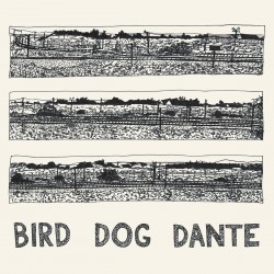John Parish - Bird Dog Dante