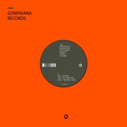 The Gondwana Orchestra - Colors