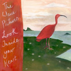The Wave Pictures - Look Inside Your Heart