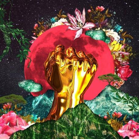 Rina Mushonga - In A Galaxy (LTD Pink Vinyl)