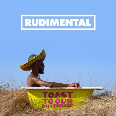 Rudimentary - Toast To Our Differences