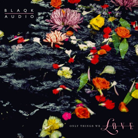Blaqk Audio - Only Things We Love (LTD Water Pic Disc)