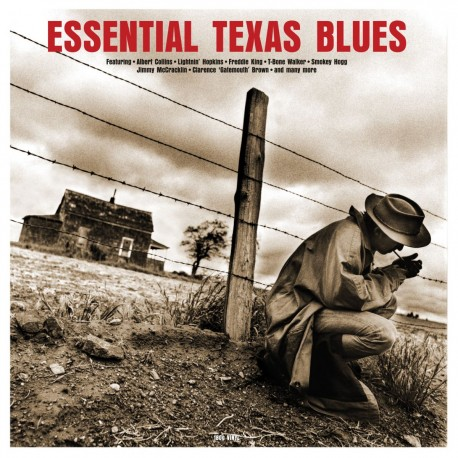 Various - Essential Texas Blues