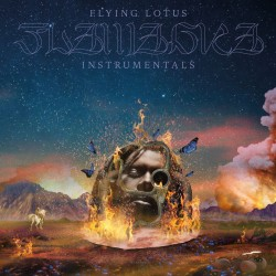 Flying Lotus - Flamagra Instrumentals (with slipmat)