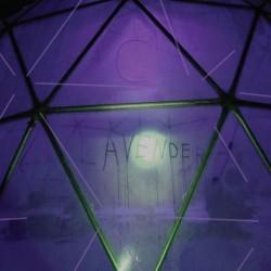 C. Lavender - Myth Of Equilibrium